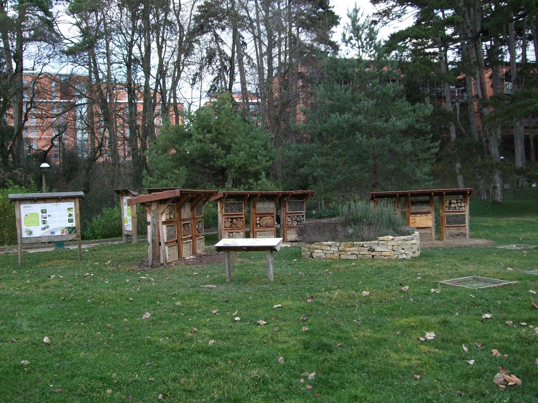 Photographie globale du site Urbanbees au parc de la Tête d'Or de Lyon