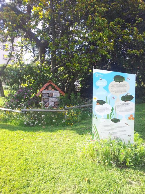 Hôtel à Insectes de Caluire et Cuire en été avec son panneau ludique.